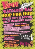 VSPOT Waitangi Day Promotion